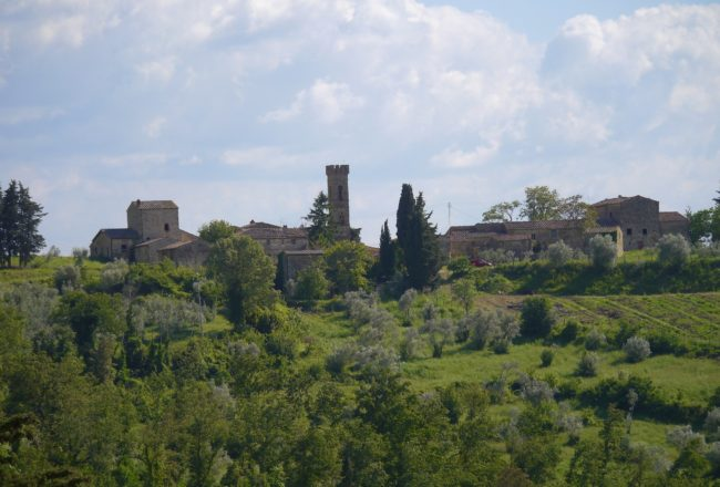 """Podere Erica views"" biodynamic wines in Chianti"