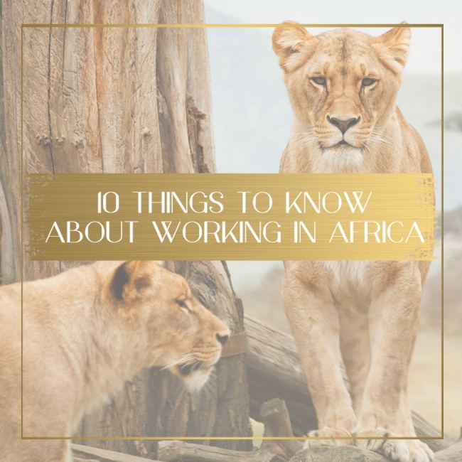 Working in Africa feature