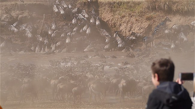 Watching The Great Migration at one of Kenya's best parks