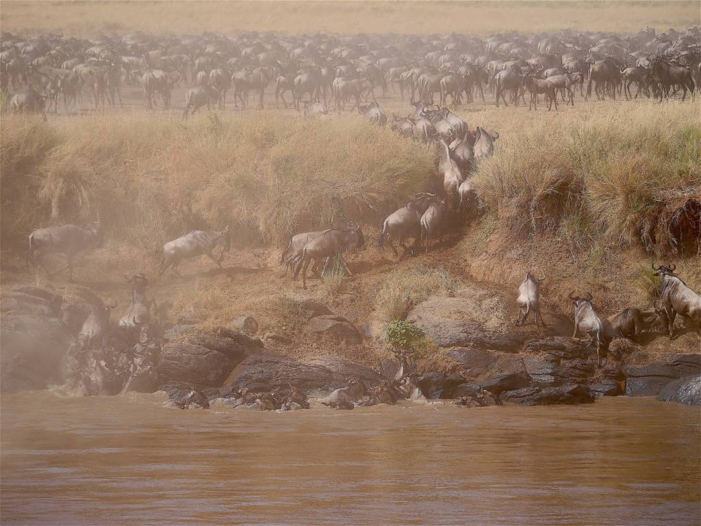 Planning a Great Migration safari on the Maasai Mara