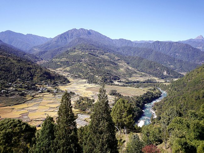 """Punakha valley'"