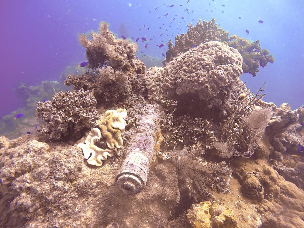 Bow gun on Shinkoku Maru, Chuuk