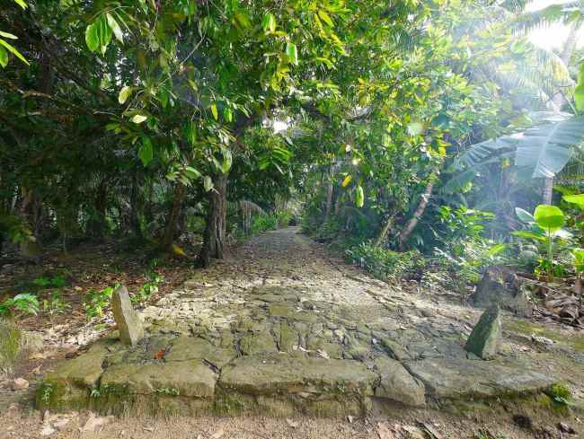 """""""Coral top path in Yap"""""""