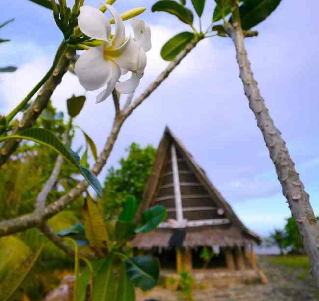 "Men's House in Yap"""