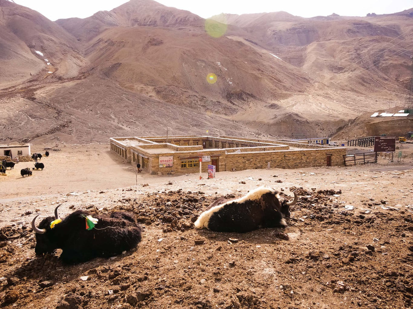 Rongbuk monastery guesthouse