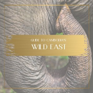 wild east of cambodia