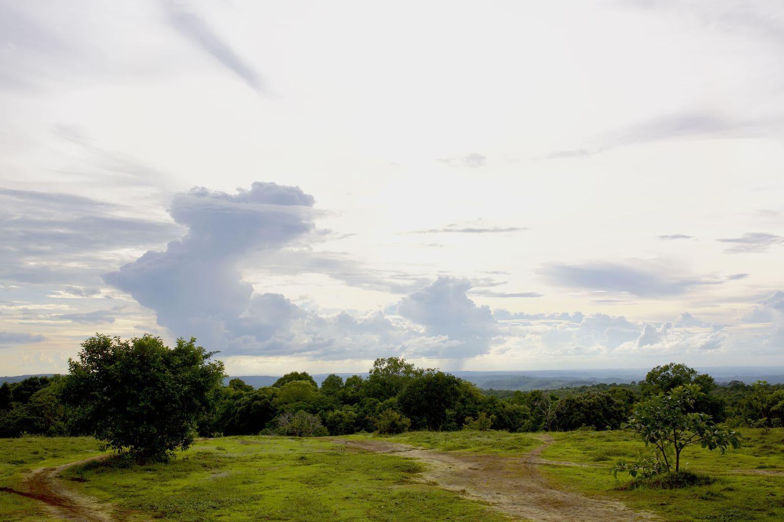 Mondulkiri view