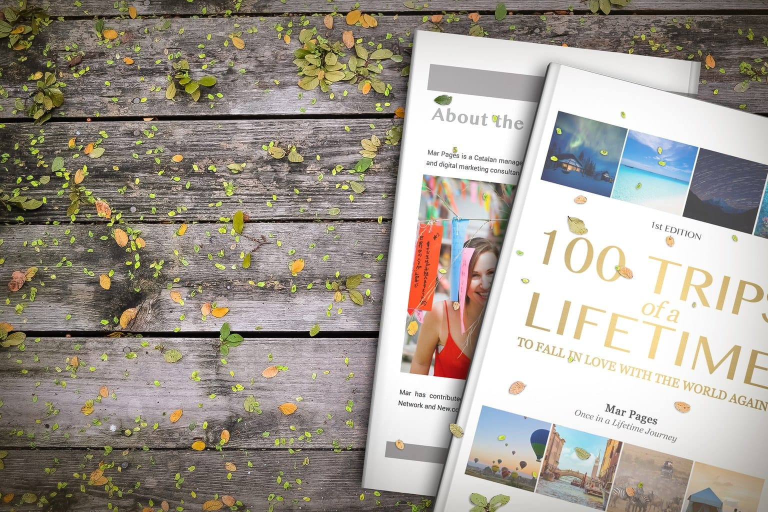 100 trips of a lifetime book