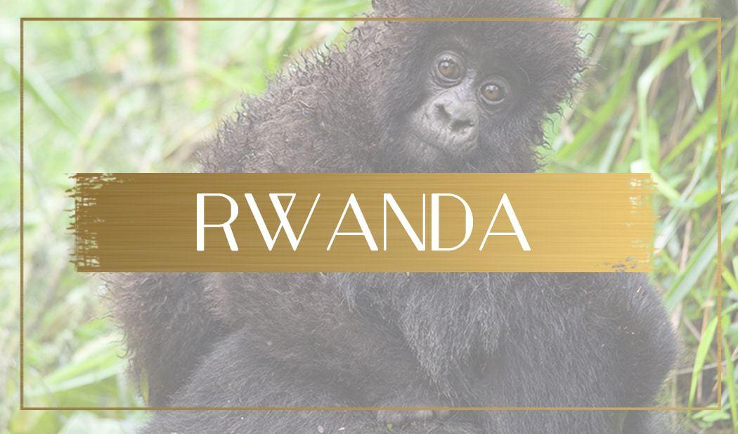 Destination Rwanda main