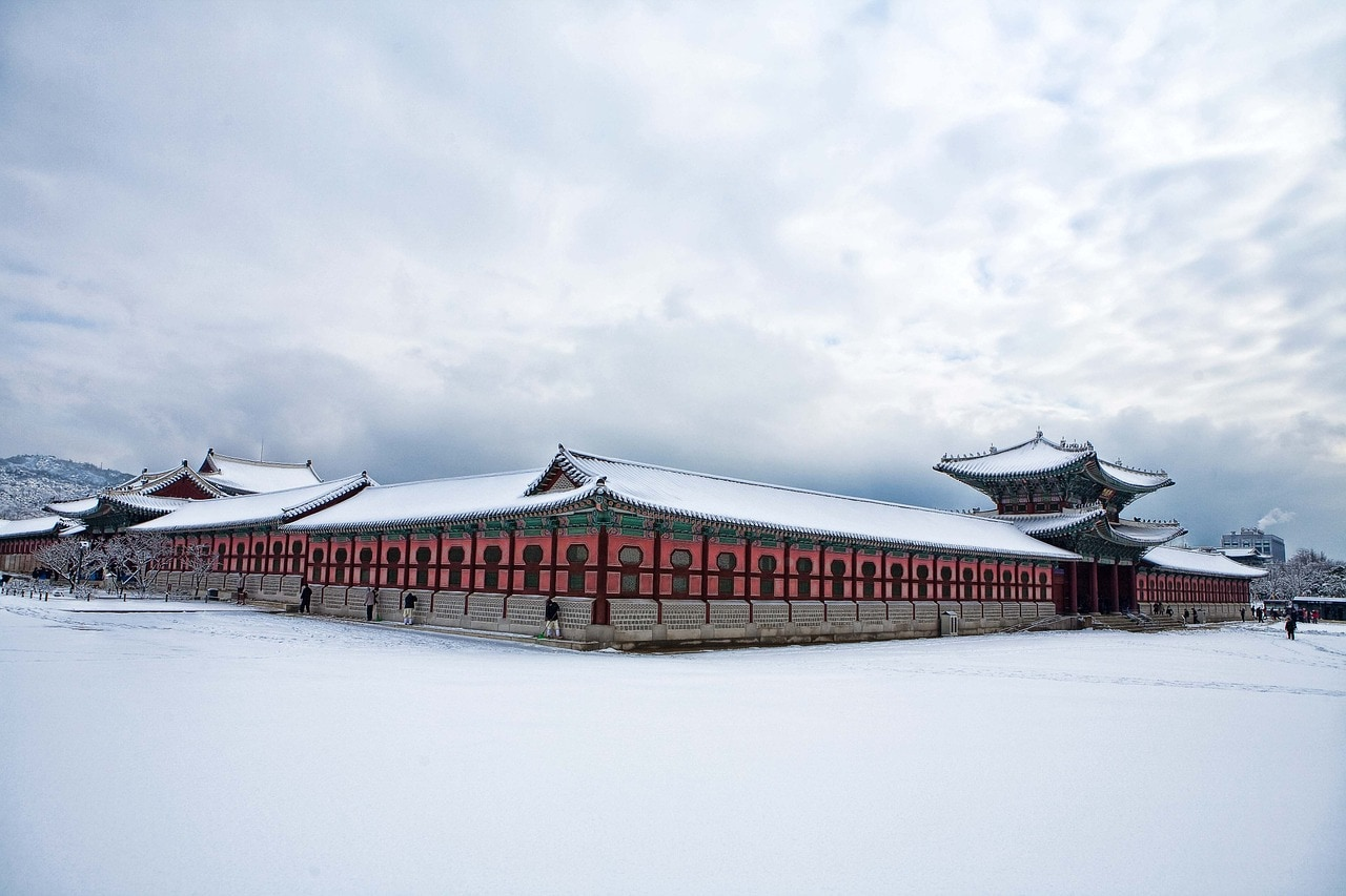 Instagrammable Gyeongbok Palace in any season
