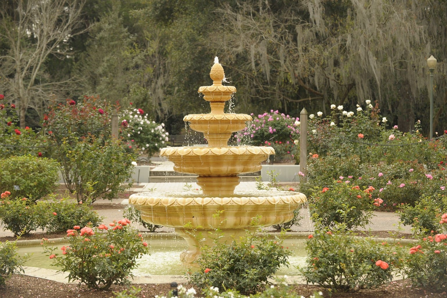 Unusual, cool and different things to do in Orlando - Once In A ...
