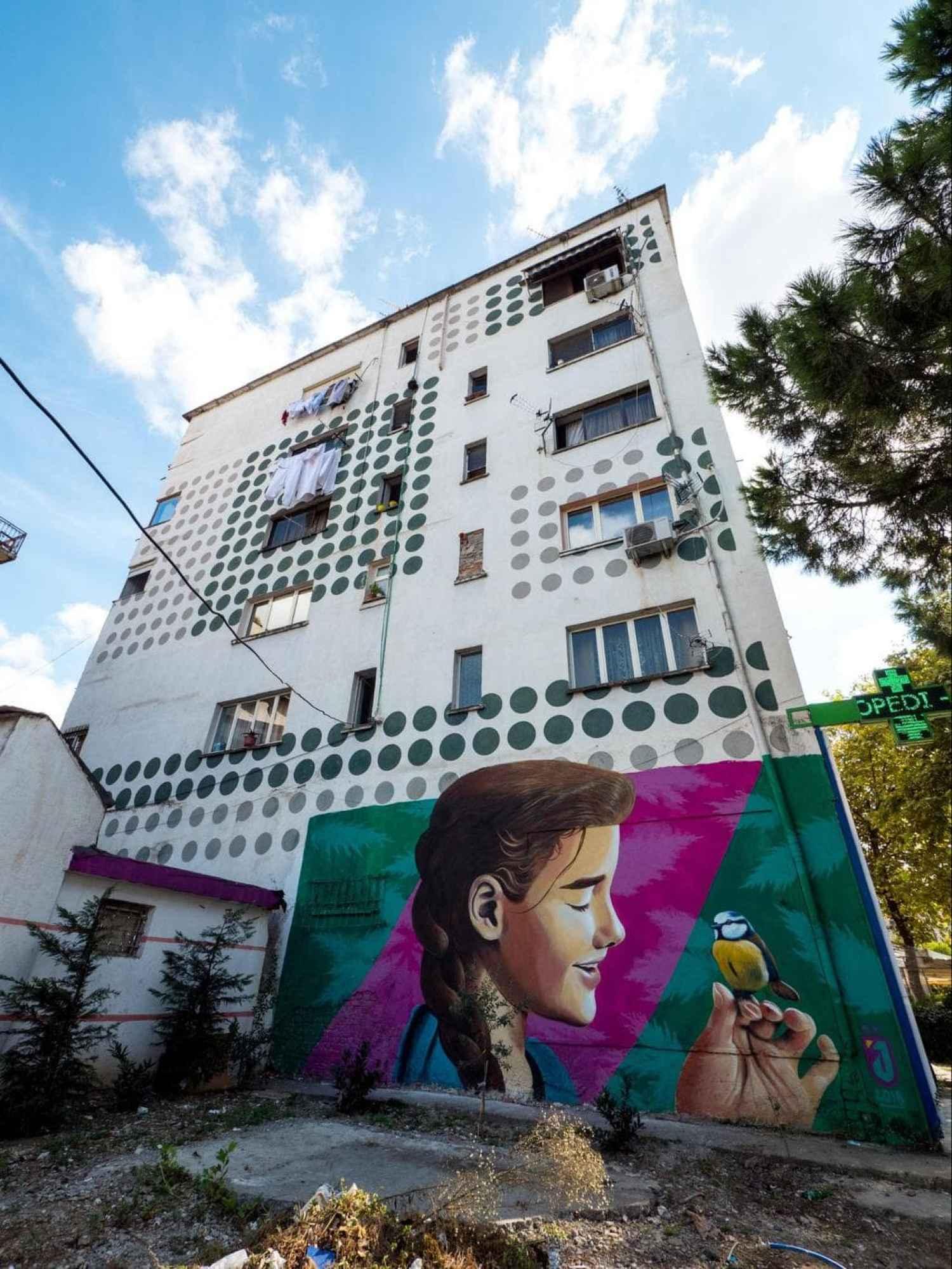Wall mural near Zogu I Zi Square