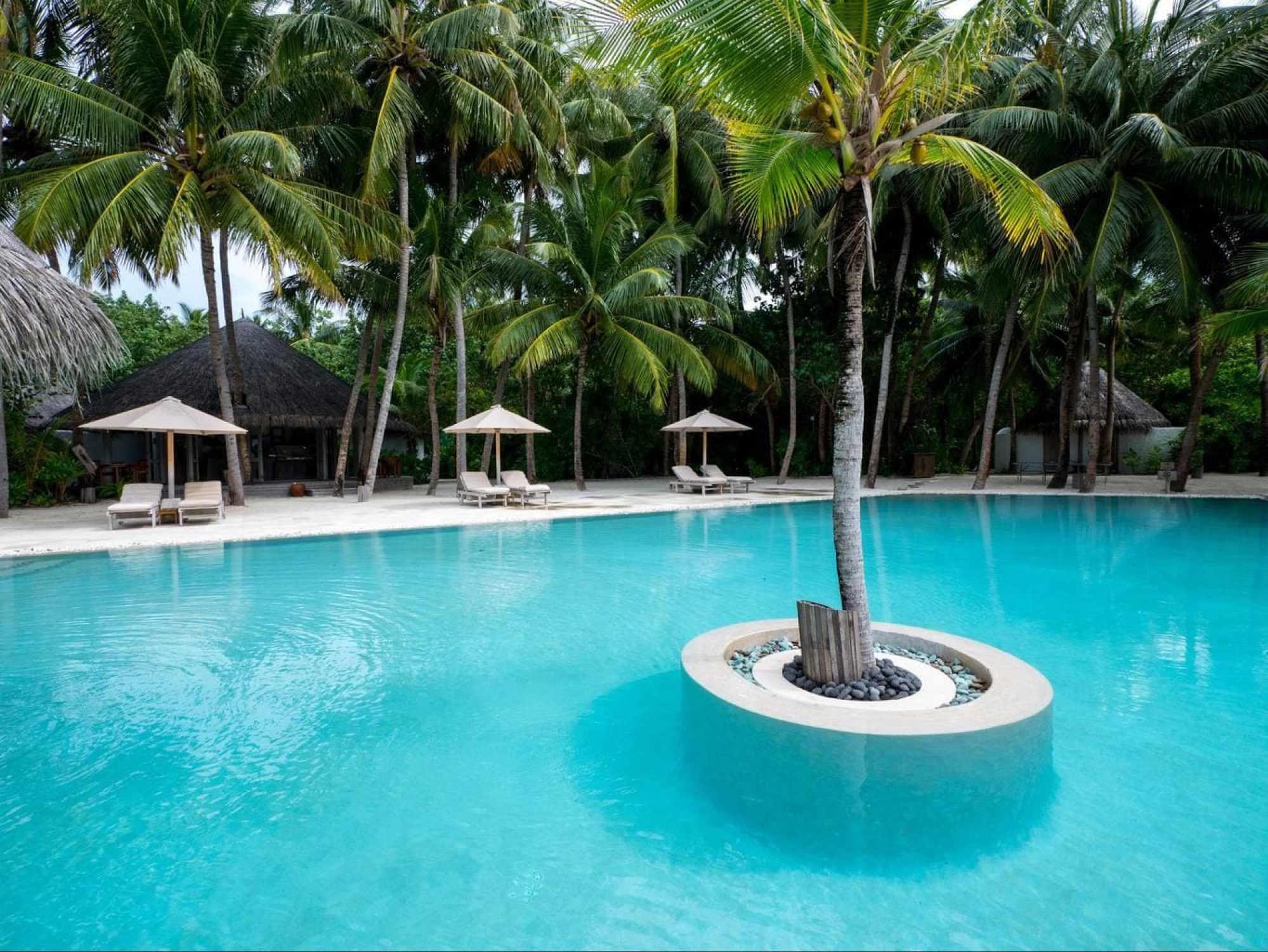 The shared pool at Gili Lankanfushi