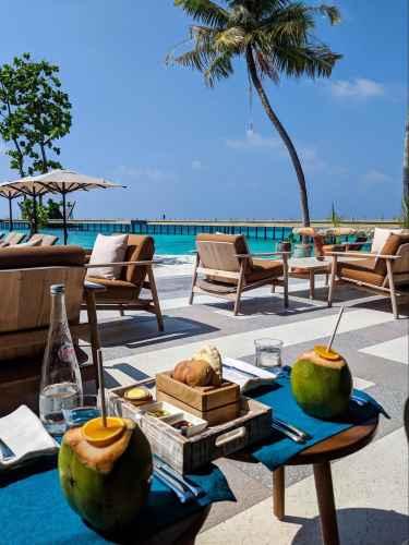 Mura Bar coconuts at Joali Maldives