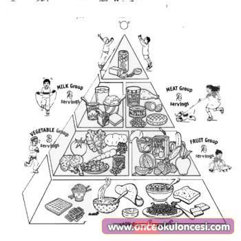 Besin Piramitleri