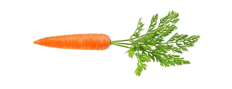 AL012-02 carotte
