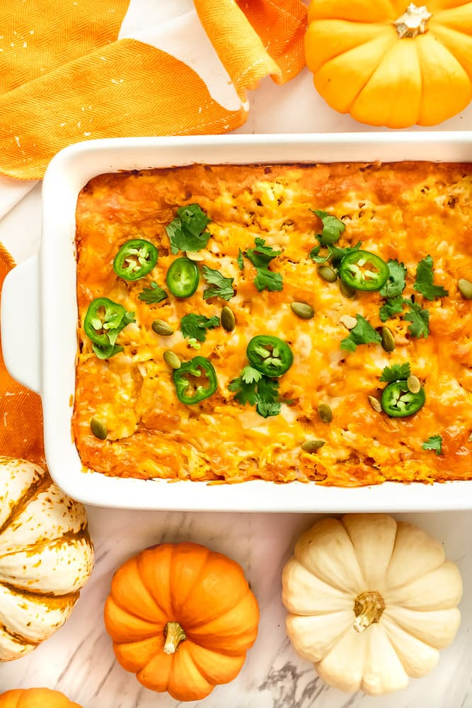 chicken and pumpkin puree recipes