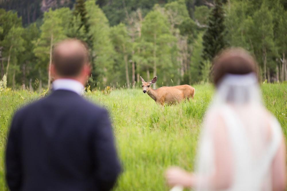 09-beanos-cabin-wedding-photos.jpg