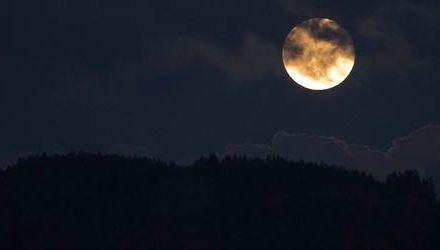 El programa Cáncer Moonshot de la administración Obama