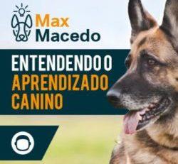 Curso Aprendizado Canino: O Guia Definitivo