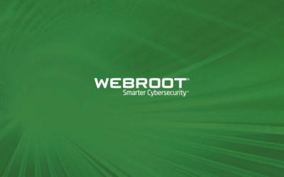 Webroot Research Identifies the Top 10 Most Infected US   Webroot