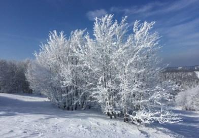 Winterreis door Noord Frankrijk