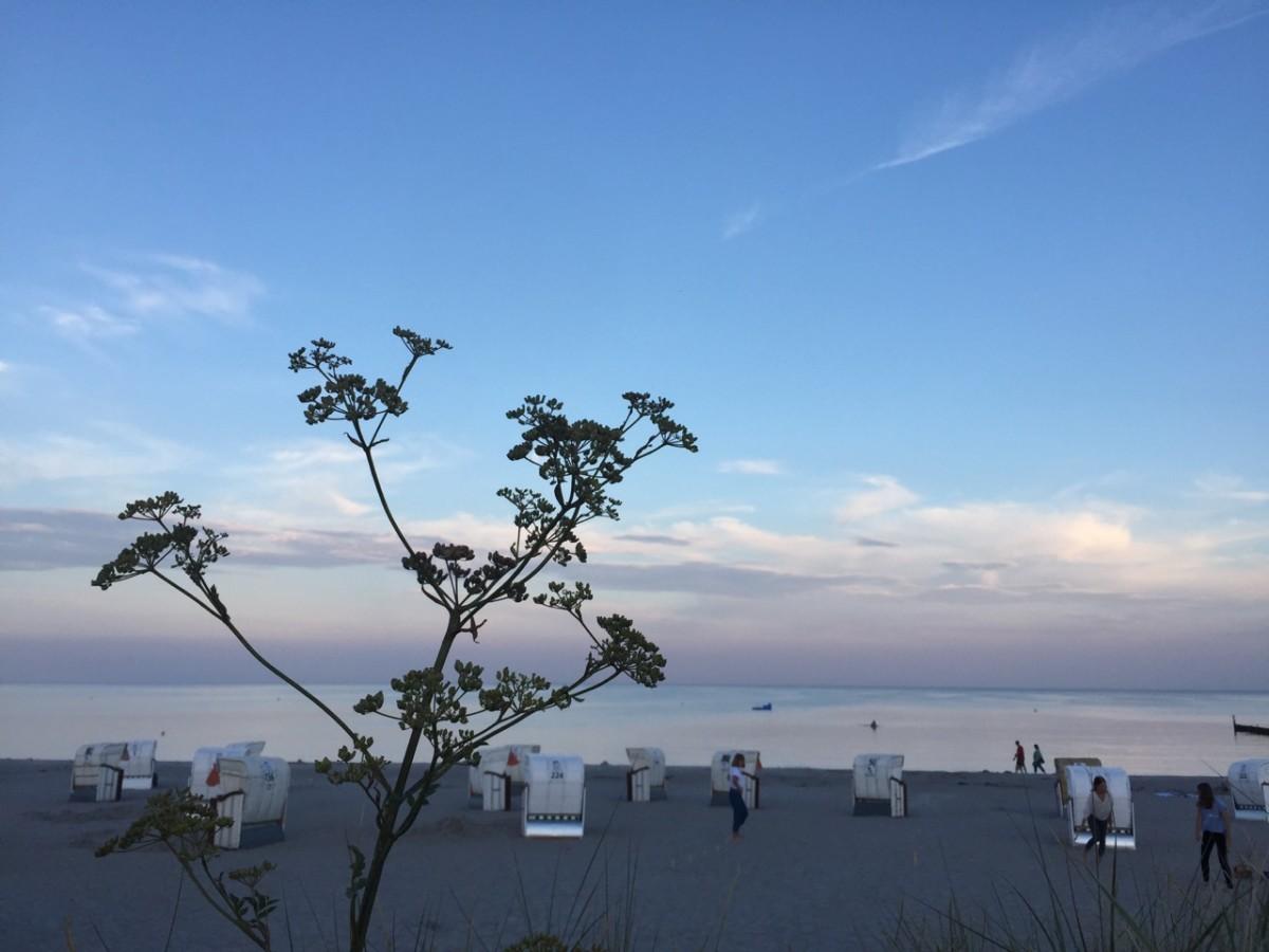 1 | Baden in de Oostzee