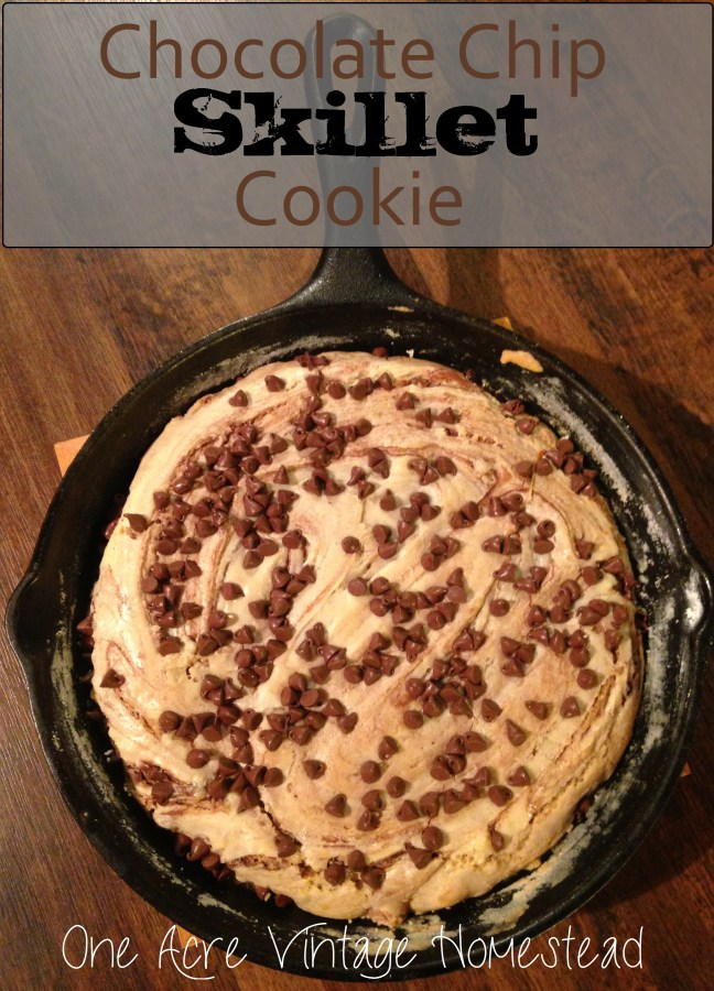 Chocolate Chip Skillet Cookie - One Acre Vintage Homestead Recipe