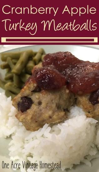 apple cranberry turkey meatballs