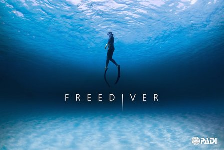 Freediving Courses One Breath Freediving