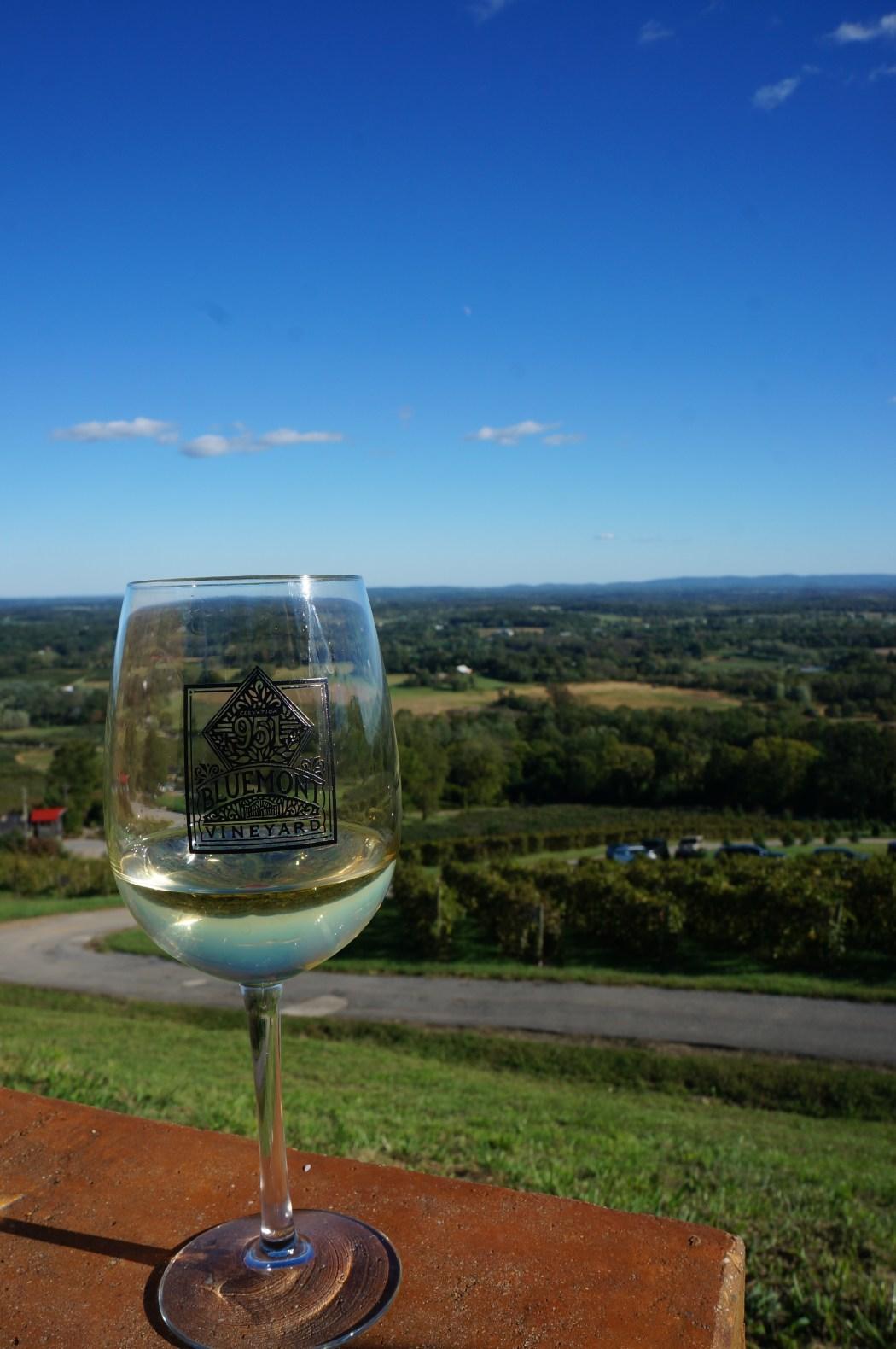 Bluemont Vineyard in Fall