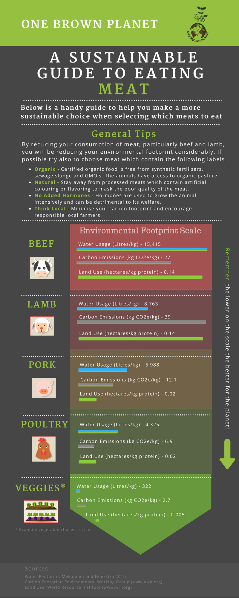 Sustainable meat, infographic, one brown planet