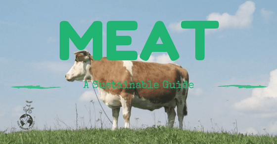 One Brown Planet, feature header, sustainable meat, cow profile