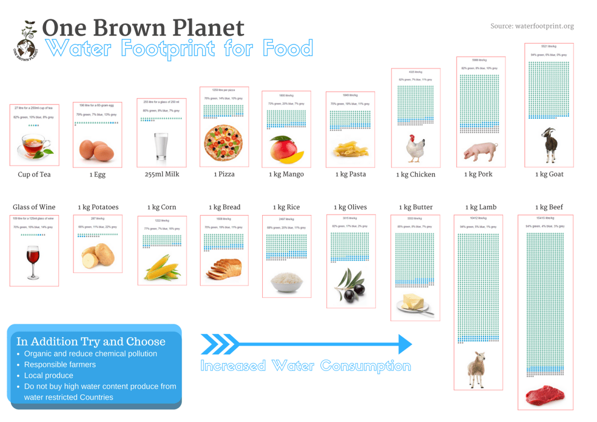 Water Footprint Infographic, One Brown Planet