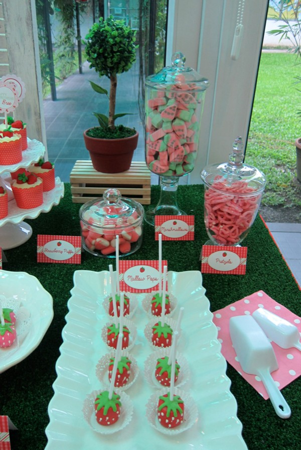 Strawberry-Garden-Party-Theme_22