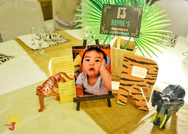 Safari Themed Birthday Party