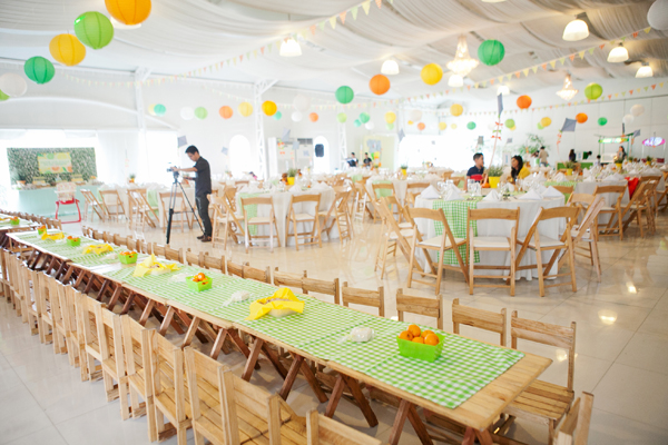 Picnic Themed Birthday Party - 12