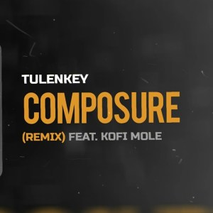 Tulenkey - Composure (Remix) Ft Kofi Mole