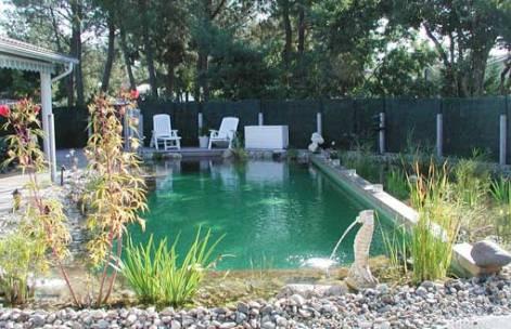 avantages-piscine-naturelle