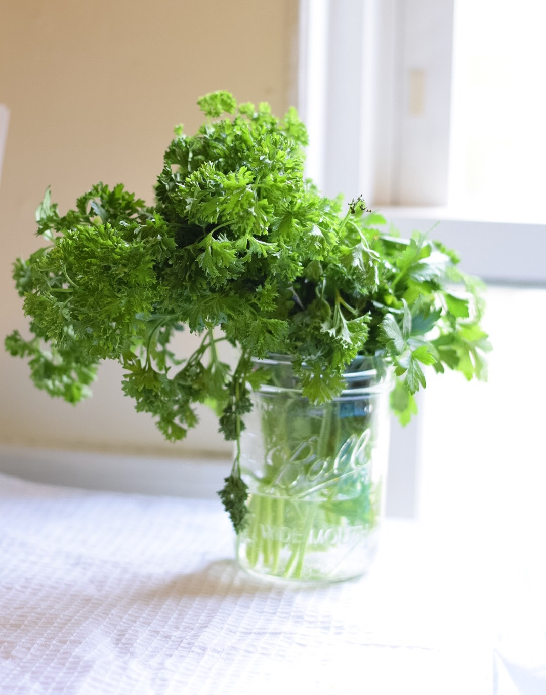 How To Keep Flowers Fresh Overnight A Guide To Fresh Flowers In The Home
