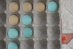Make Your Own Egg Carton Game