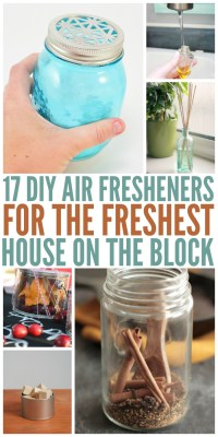 17 DIY Air Fresheners for the Freshest House on the Block