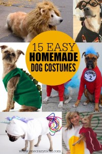 Homemade Dog Costumes