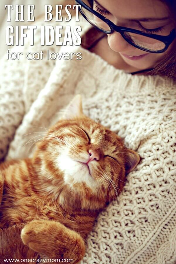 Best Gifts for Cat Lovers  20 Unique Gift Ideas for Cat