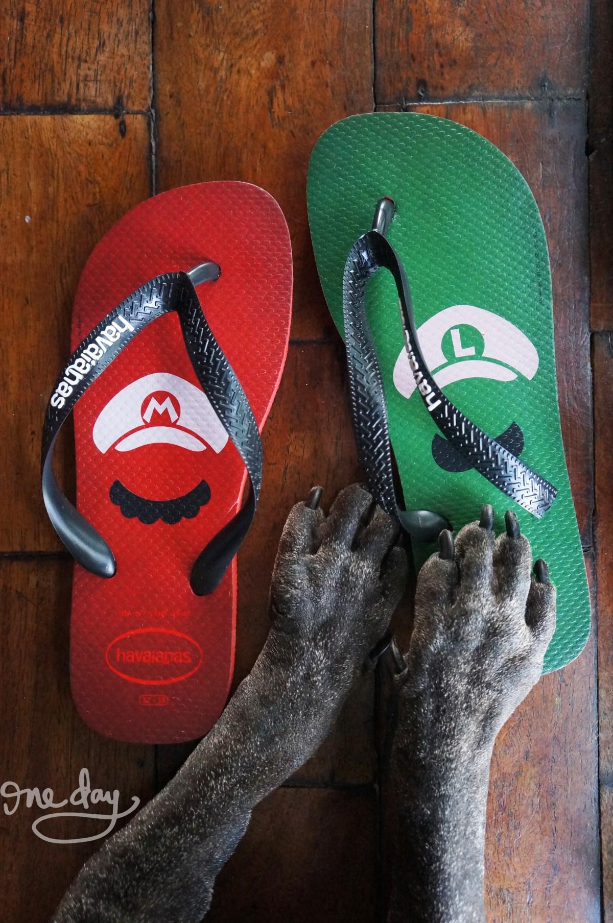 Mario Brothers x Havaianas