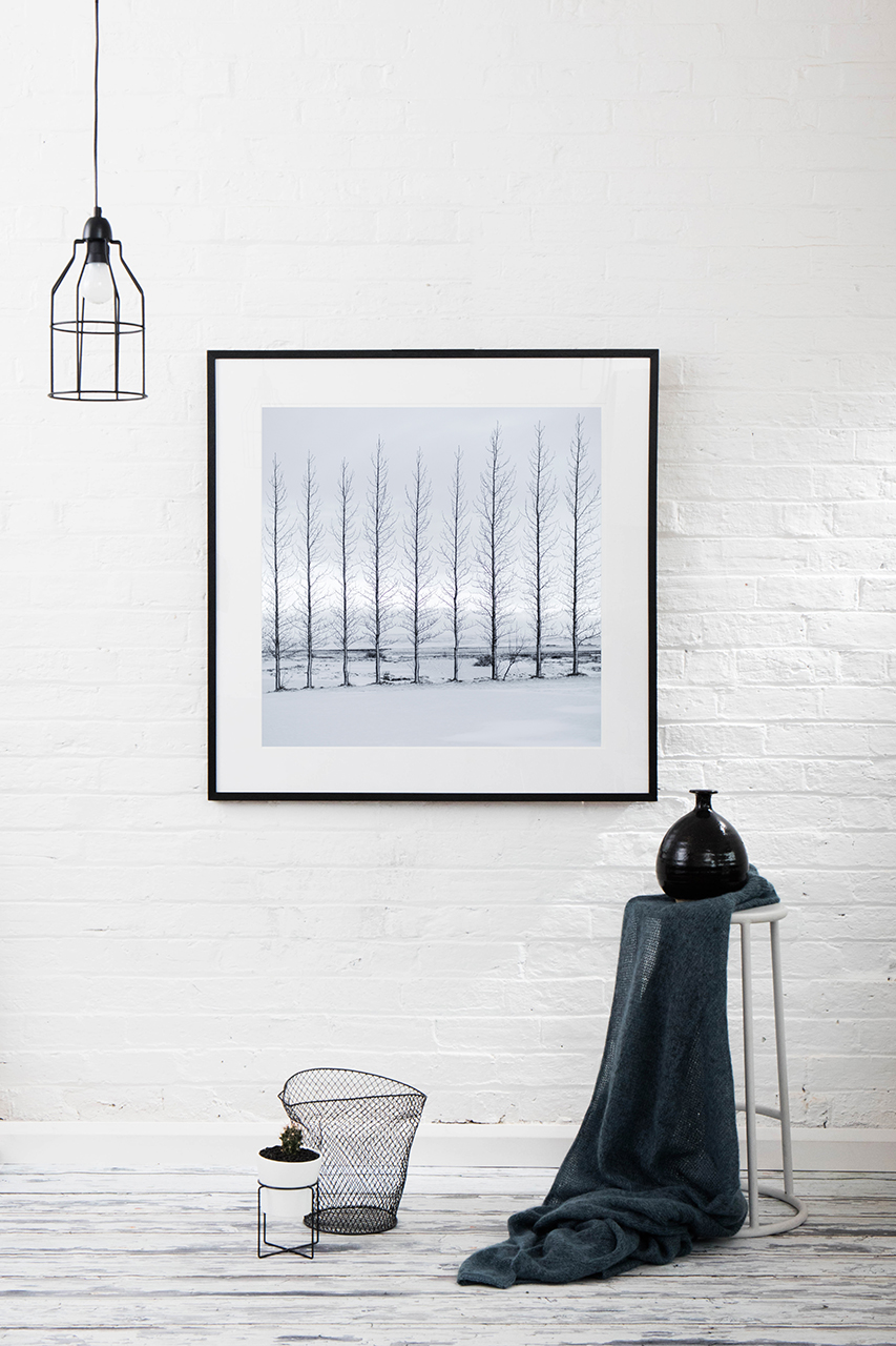 A Lanscape photographic print of snow and trees taken by Hilary Wardhaugh on wall