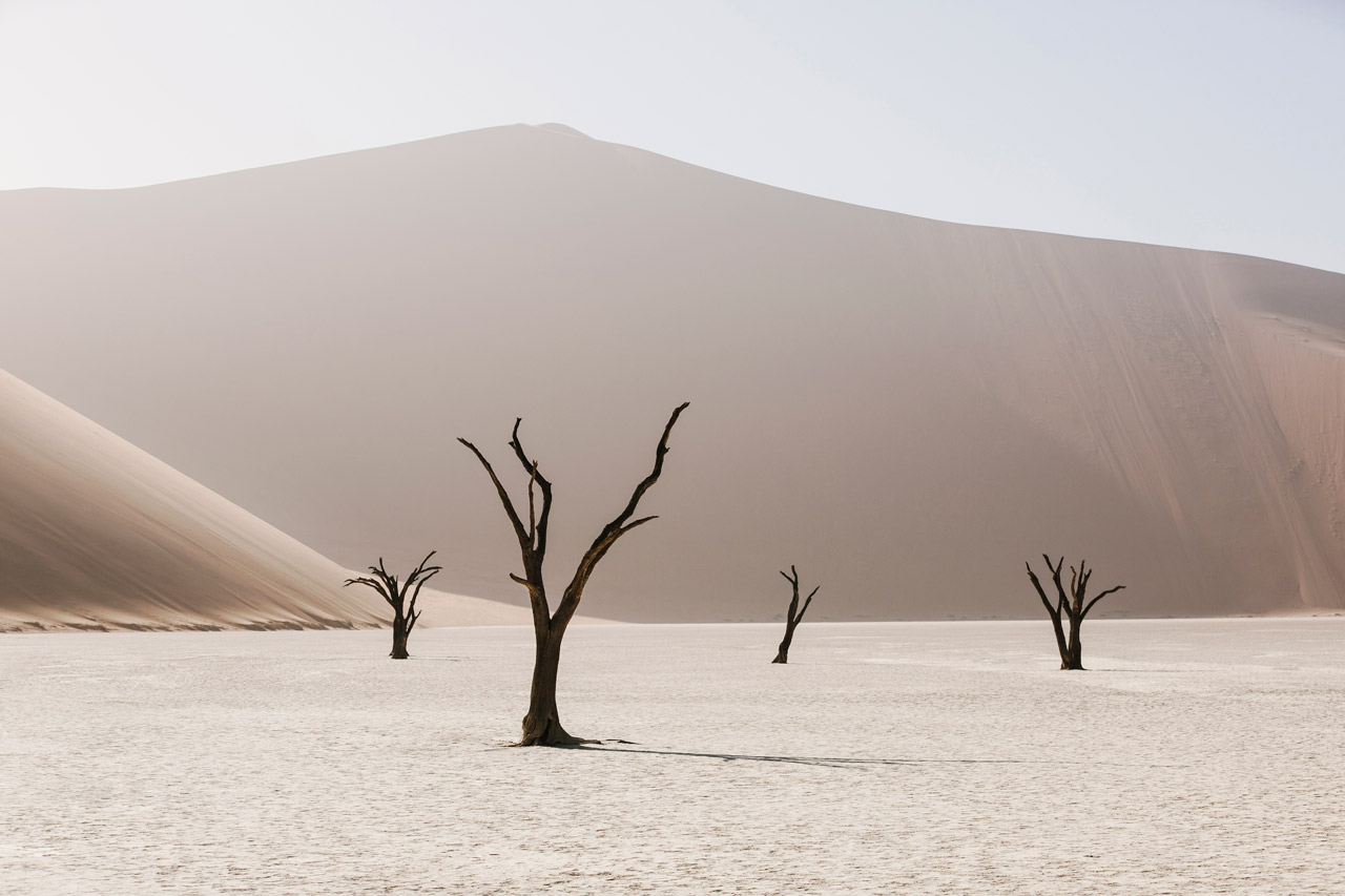 An Abstract photo of African Landscape of mountains, sand and trees in brown, pink and white.