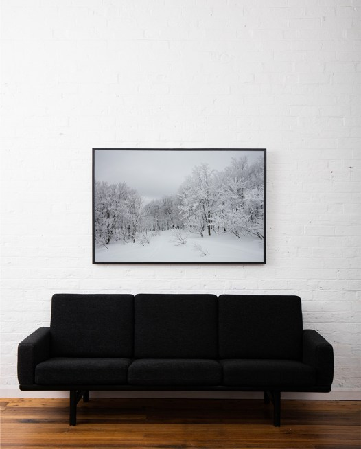A photographic image of A forest of trees in soft snow framed in black timber above sofa