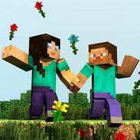 Minecraft Marriage