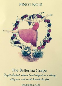 In Winebird's Vinalogy pinot noir is the Ballerina